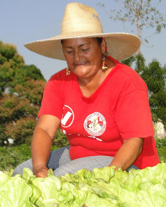 Inicia visita nacional de la Agricultura Urbana y Suburbana