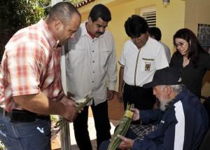 Fidel 5