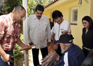 Fidel 6