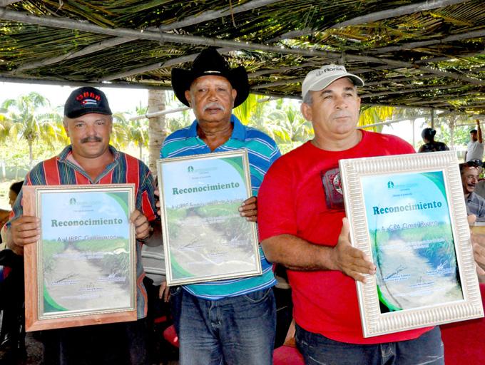 Reconocen a líderes de los rendimientos cañeros en Granma