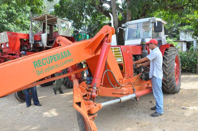 Brío productivo en la comunidad de Canabacoa
