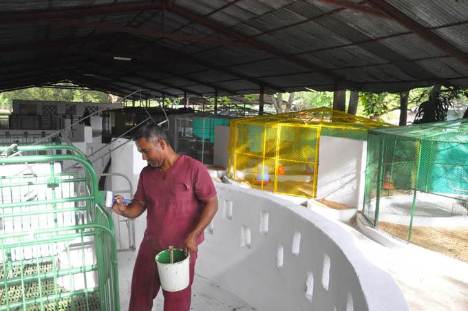 Intensifican preparativos por Feria agropecuaria Granma 2015
