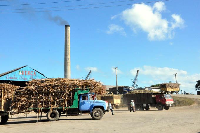 Comienza zafra azucarera en Granma
