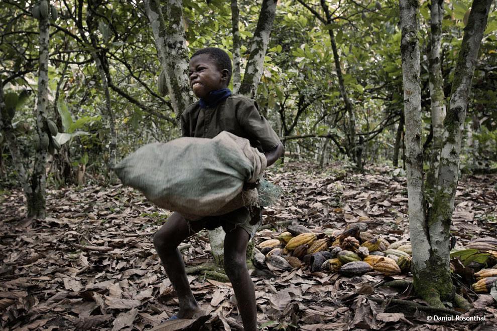 Más de 207 mil niños explotados laboralmente en Haití
