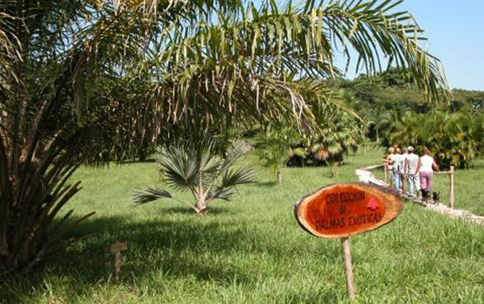 Defienden diversidad biológica provincias centrales cubanas