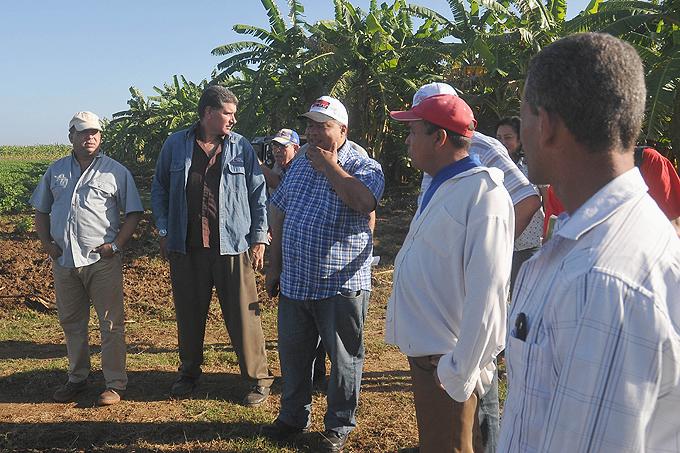 Instan a incrementar rendimientos agrícolas en Yara, Granma