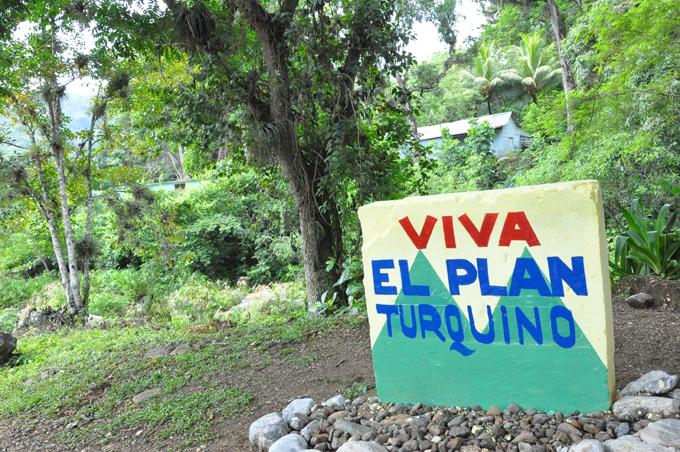El sostenido crecimiento de los bosques de Cuba