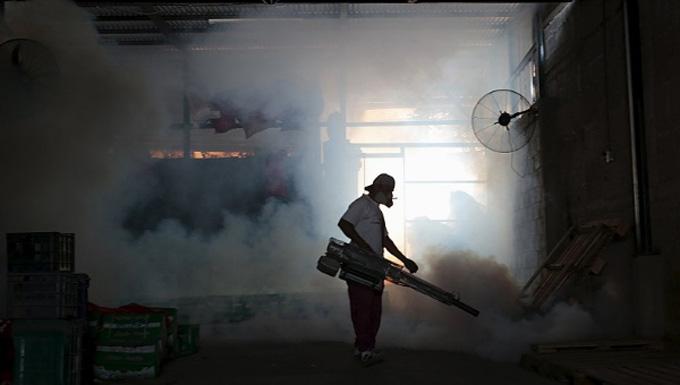 Venezuela inicia hoy plan latinoamericano contra el Zika