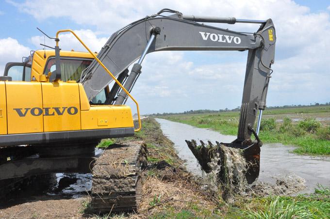 Nueva inyección por la eficiencia agroindustrial en el arroz