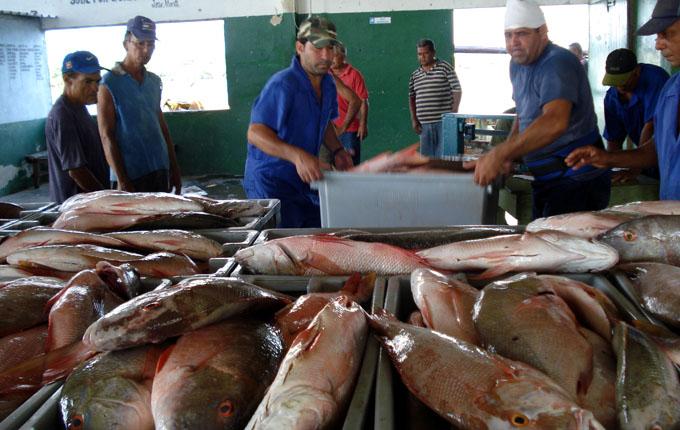 Destacan empresas pesqueras en flexibilización de objeto social