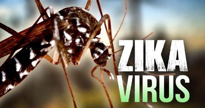 Se diagnóstica el primer caso de transmisión autóctona de virus de Zika