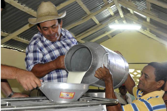 Granma mantiene  crecimiento en producción de leche de vaca