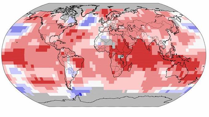 Récord de calor en todo el mundo por undécimo mes consecutivo