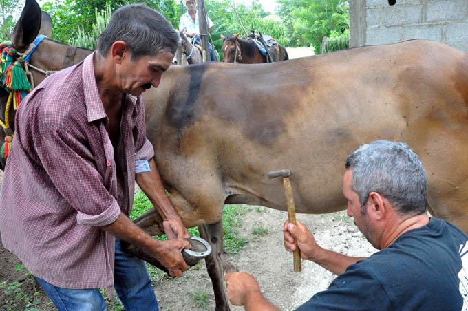 Fabulaciones Serranas, Cuba