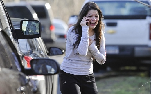 Masacre en Estados Unidos, Sandy Hook the Newton