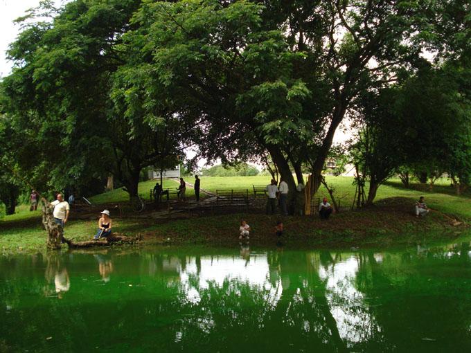 Cuba se une a festejos globales por Día Mundial del Medio Ambiente