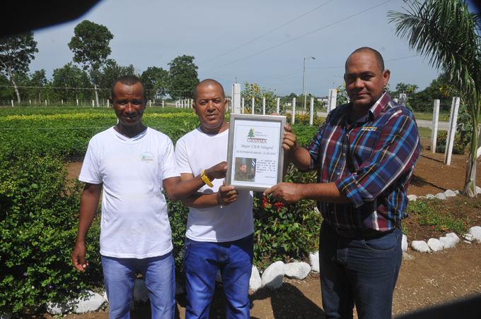 Granma celebra el Día del trabajador forestal con mayor cobertura boscosa