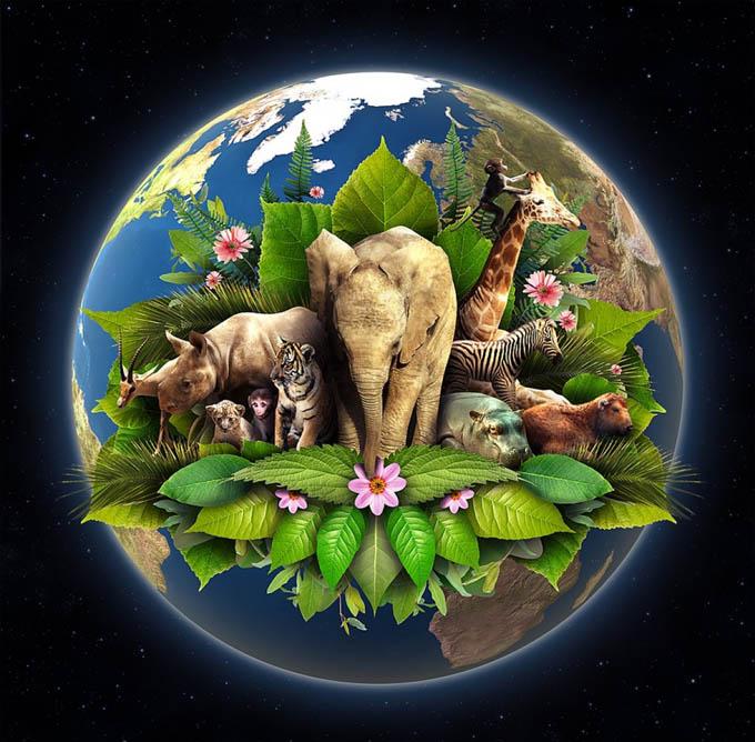 Propone ONU medidas contra tráfico de flora y fauna silvestres