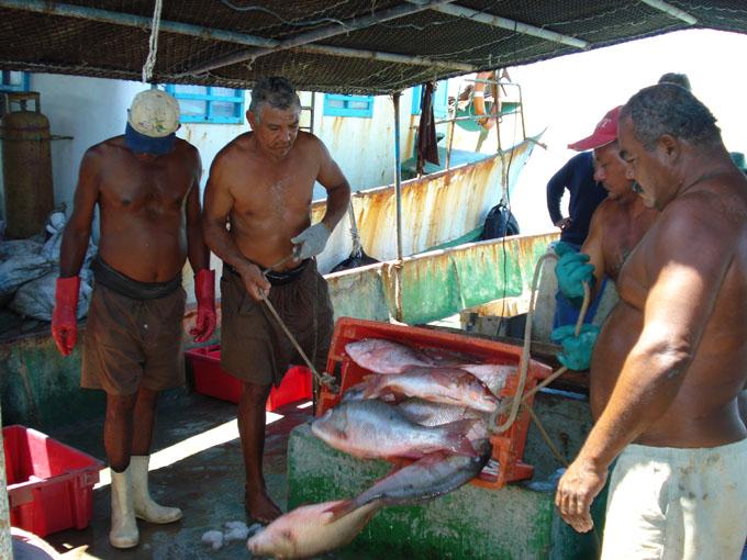 Pescagran a tono con nuevas medidas empresariales
