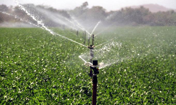 Rehabilitan sistemas de riego de cultivos protegidos