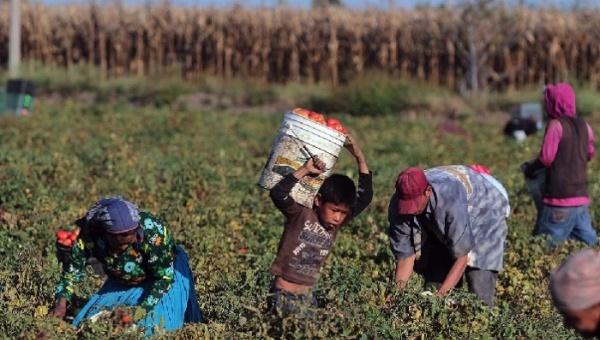 Más del 80% de los hijos de migrantes en México no asisten a la escuela