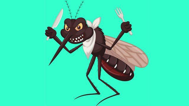 Científicos desarrollan trampa con olor humano contra mosquito de malaria en Africa