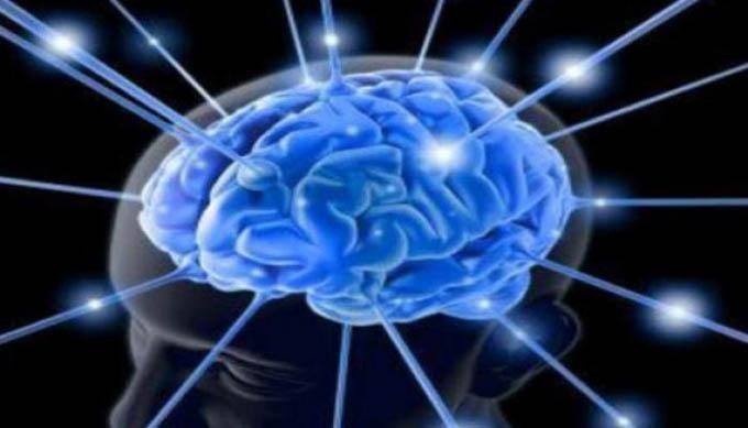 Cuba sede por vez primera de Congreso mundial de Psicofisiología
