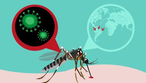 Cuba será sede de Reunión Regional de enfrentamiento al Zika
