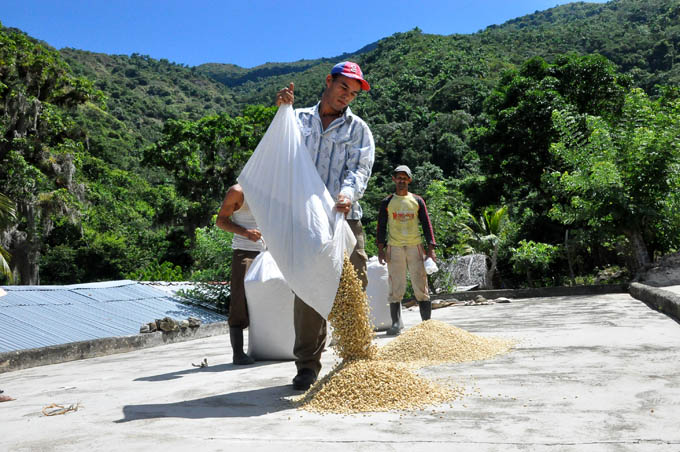Comprometidos campesinos a producir más alimentos en Granma