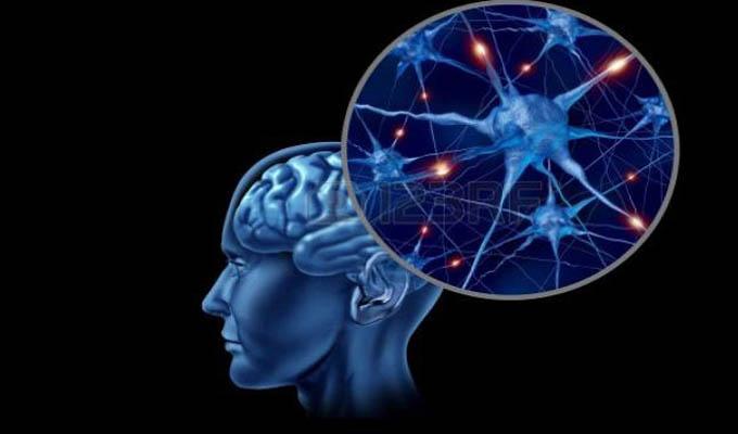 Tecnología y su aporte a las neurociencias en cita de Psicofisiología