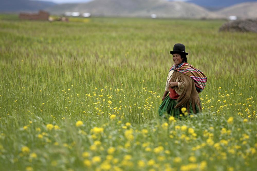 Bolivia: el país latinoamericano que redujo un 20% el nivel de pobreza