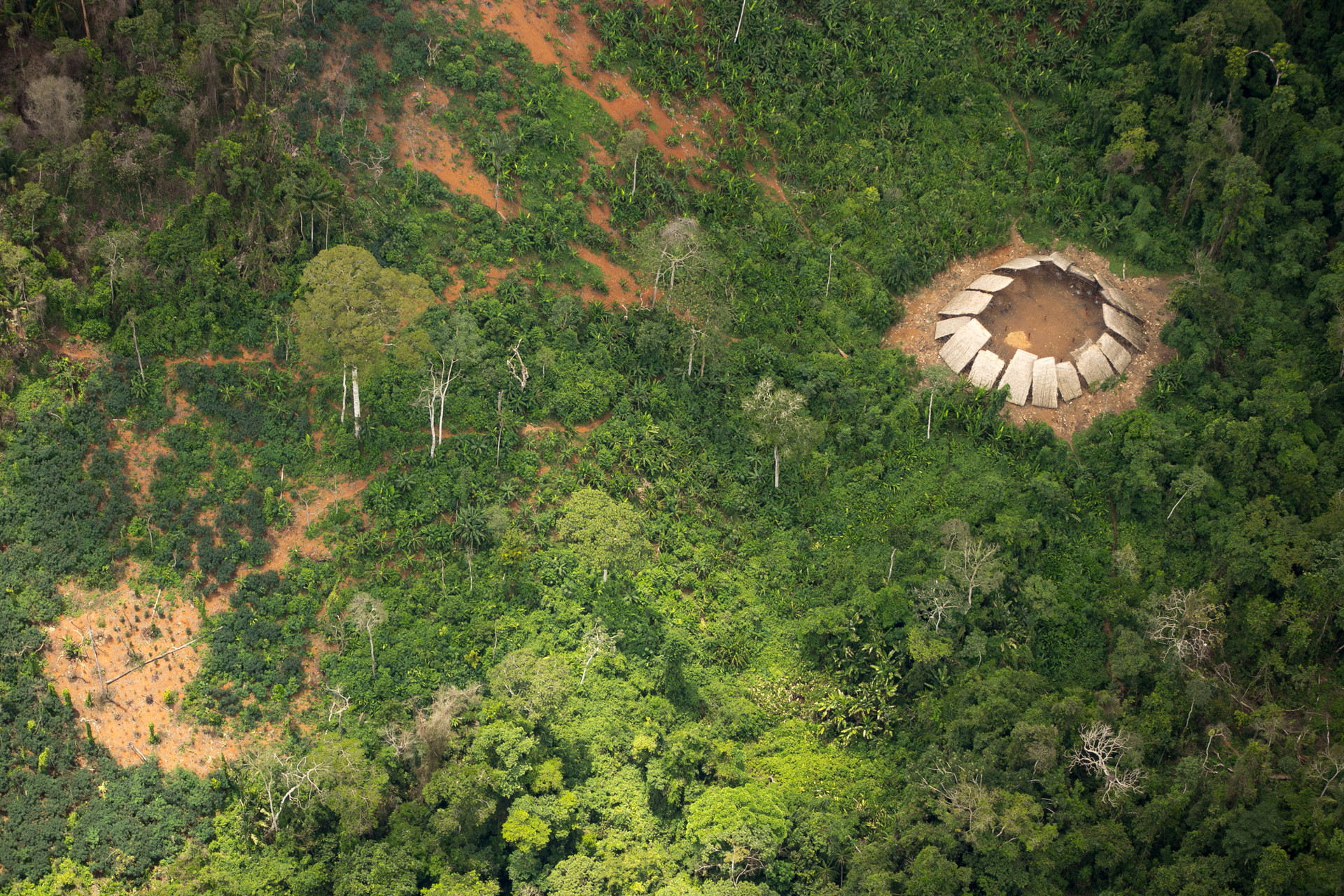 Tribu amazónica 2