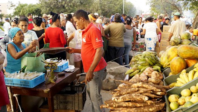 Aseguran productos agropecuarios para fin de año en Granma