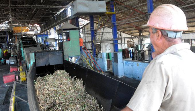 Alistan centrales azucareros en Granma