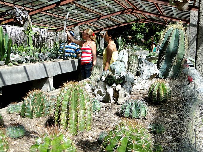 """Jardín """"salvaje"""" sigue creciendo en Granma (+ videos)"""