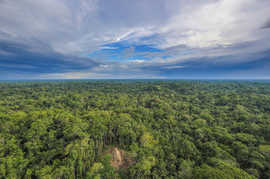 Fotógrafo captura imágenes de una tribu amazónica aislada (+ fotos)