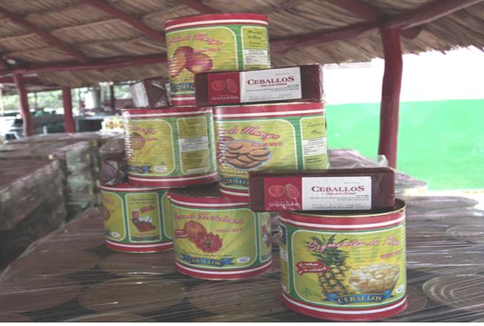 Inversiones incrementan producción en empresa agroindustrial Ceballos