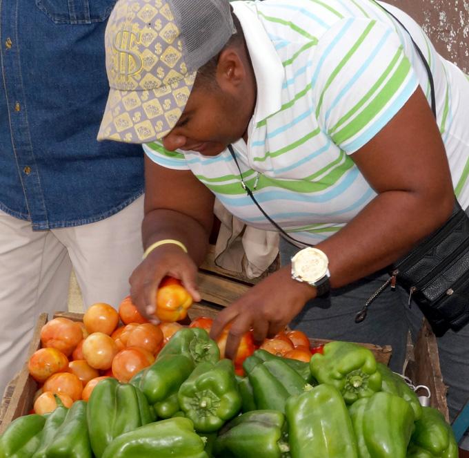 Vendedora de productos agrícola en plena faena FOTO/Luis C. Palacios Leyva