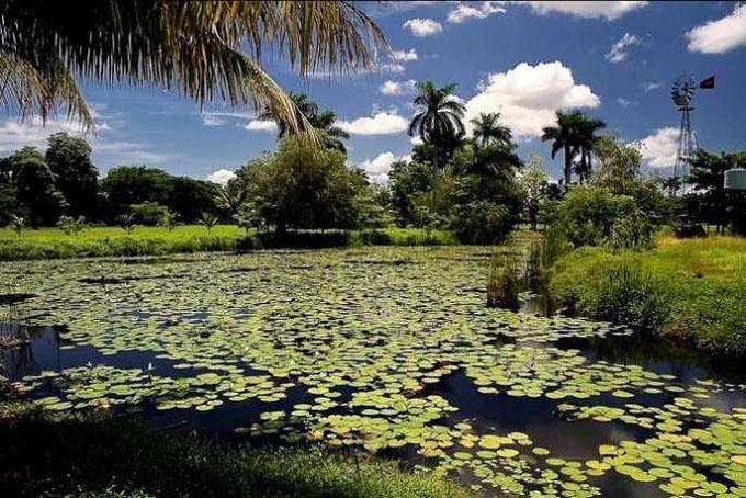 Resaltan acuerdo de parques nacionales Ciénaga de Zapata y Everglades
