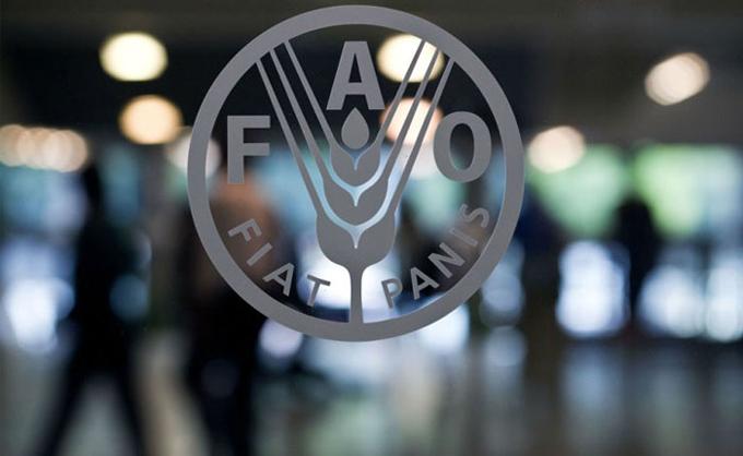 Donación de la FAO beneficiará a 148 municipios bolivianos