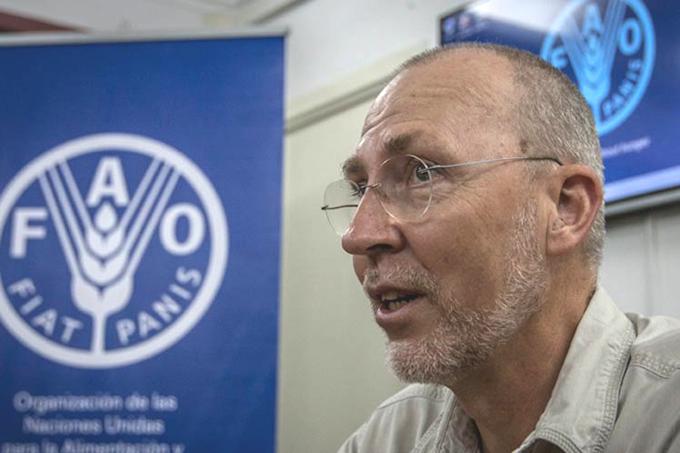 Coopera la FAO con Cuba en desarrollo de pastos