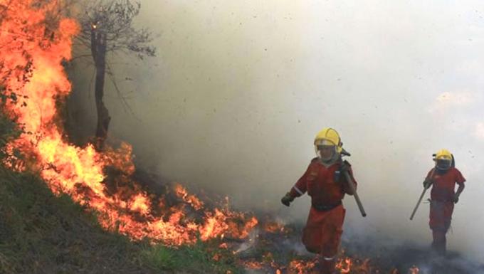 S.O.S. Incendio forestal en Granma