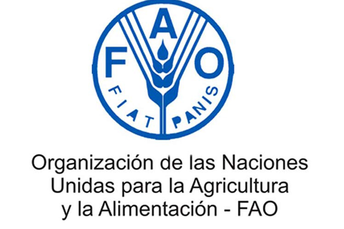 Consejo de la FAO inicia el 156 período de sesiones