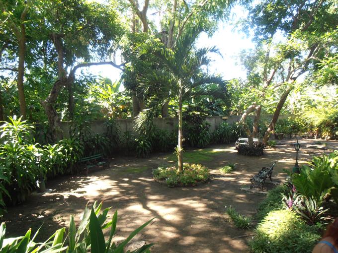 Identifican 17 jardines en Granma con plantas llamativas