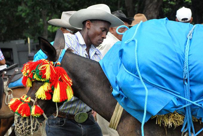 Destacan vitalidad sociocultural de la tradición arriera en Buey Arriba (fotos y videos)