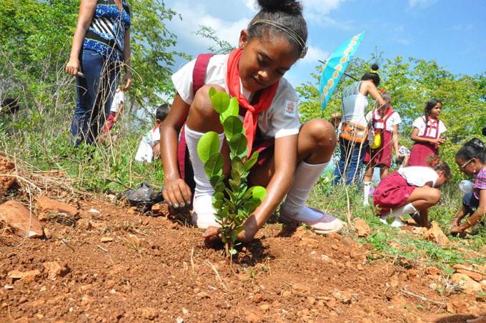 Desarrollan en Granma acciones por el medio ambiente