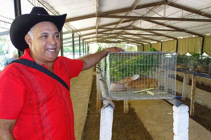 Destacan en producción de carne de conejos en Granma
