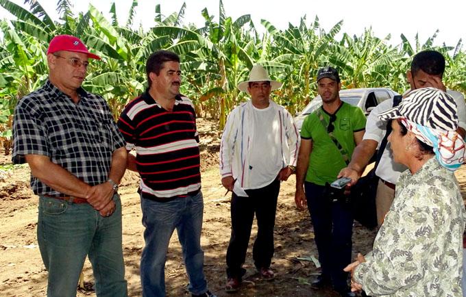 Ministro de la Agricultura cubana    recorre Granma