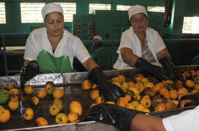 Alumec y Conservas La Manzanillera de cumpleaños