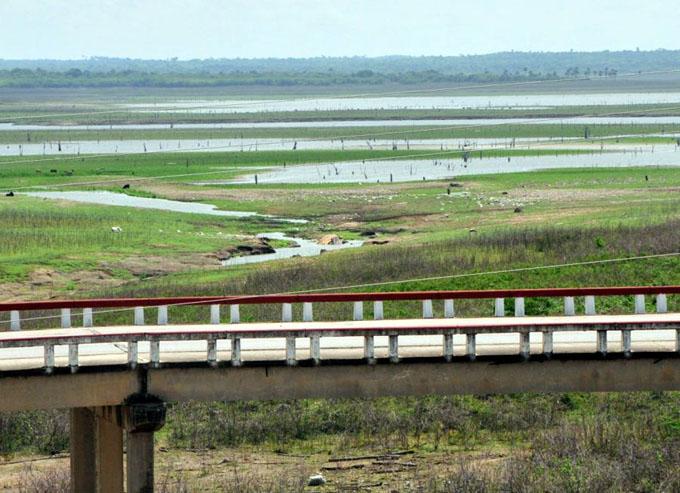 Impacta la sequía en el 43 por ciento del territorio nacional